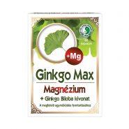 Ginkgo Max kapszula Magnéziummal