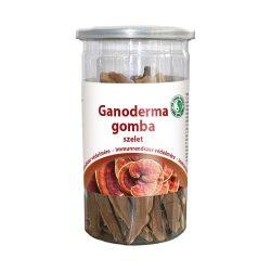 Ganoderma gomba szelet