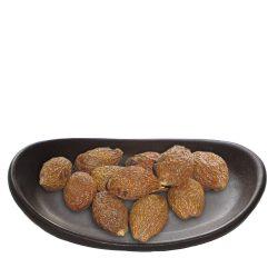 Pangdahai termés