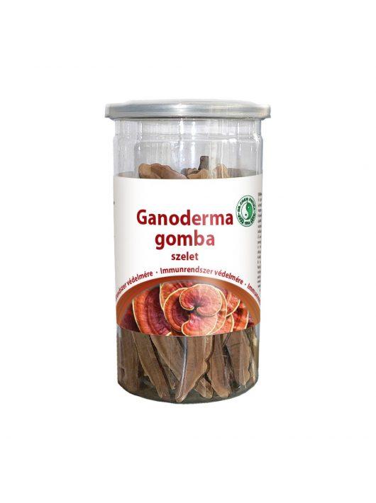 Ganoderma mushroom slices